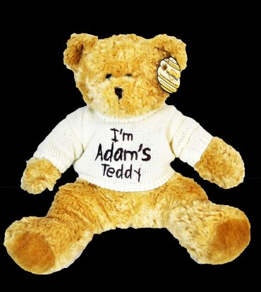 Teddy with Cream Jumper
